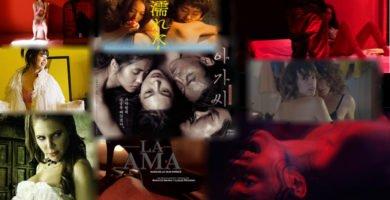 Películas eróticas de 2016