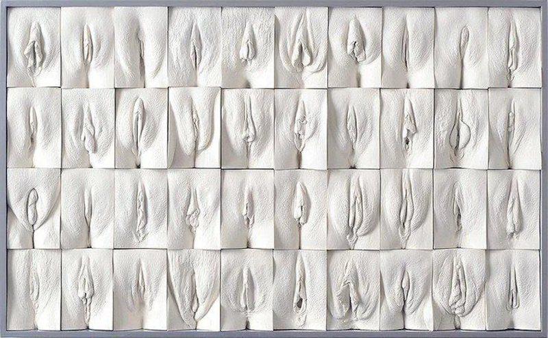 Tipos de vaginas